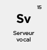 serveur vocal